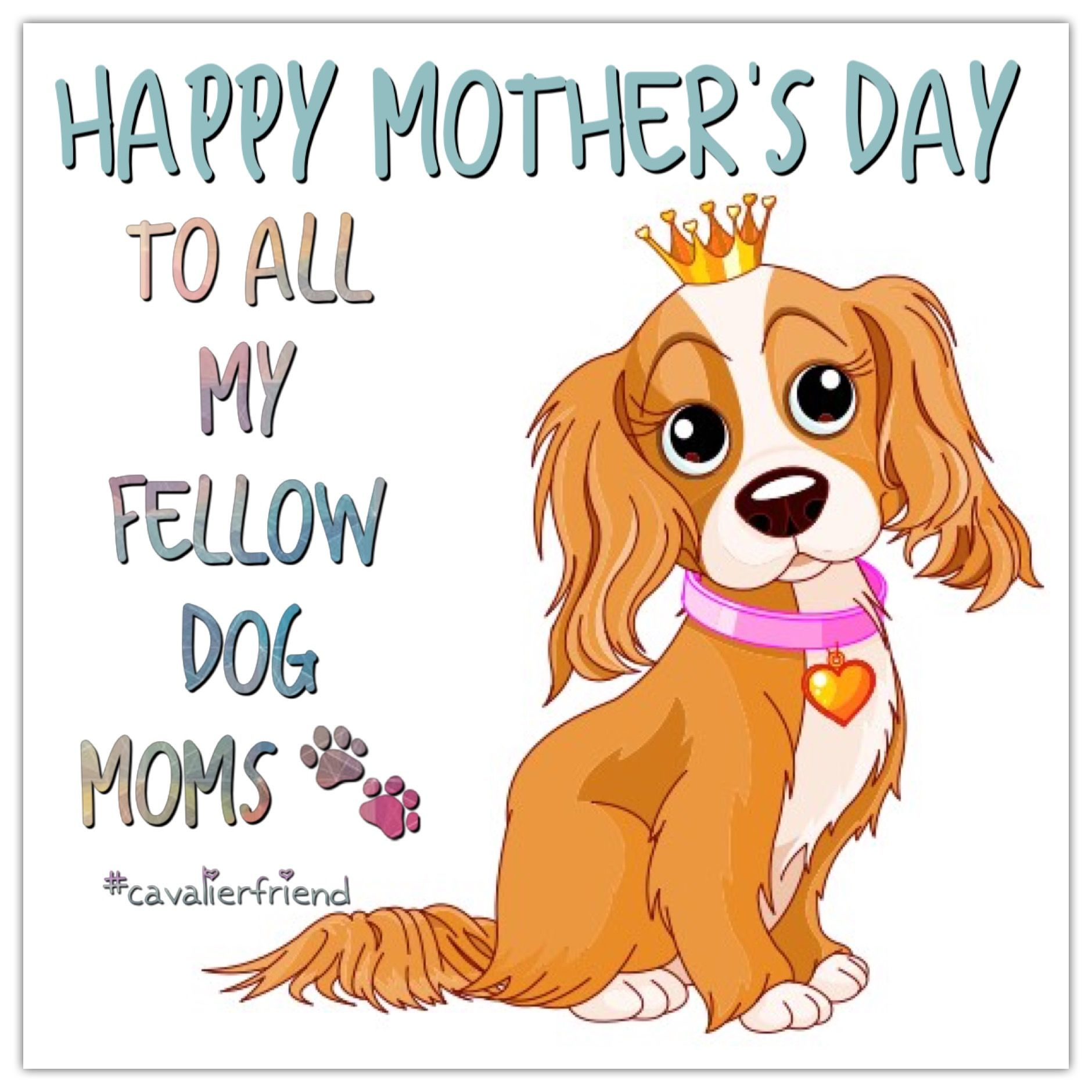 Happy Mother S Day To Dog Moms Happy Mothers Day Dog Mom Puppy Love