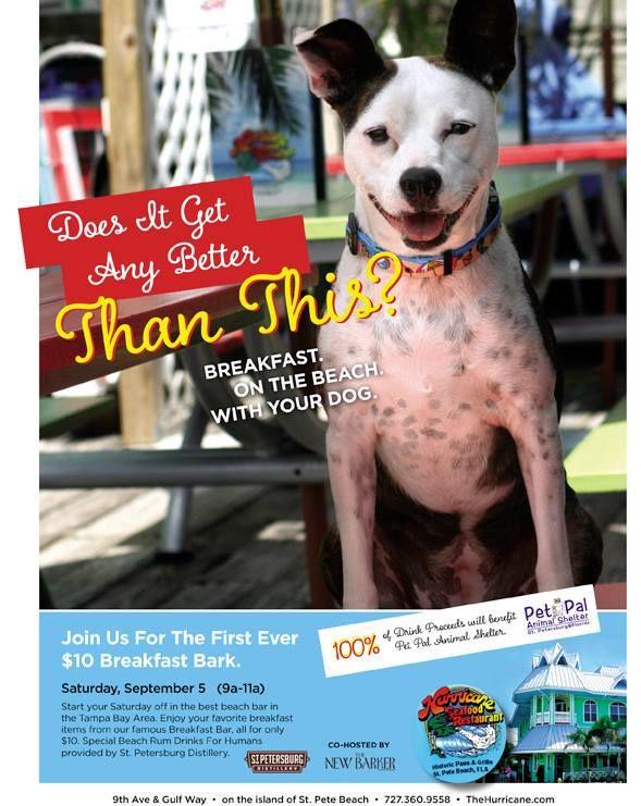 Breakfast Bark On Saturday September 5 Join Us For A Dog