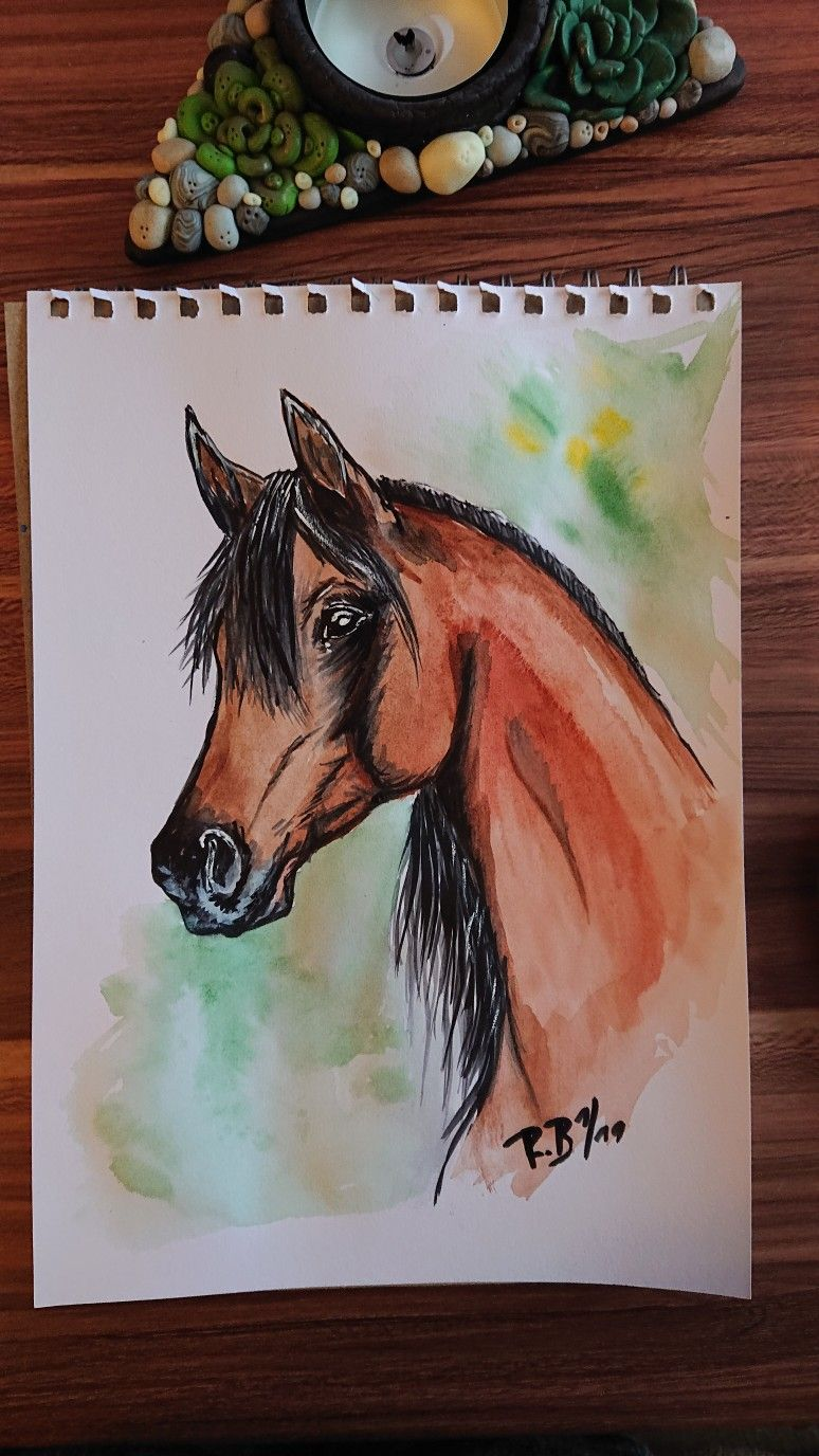Aquarell Pferd