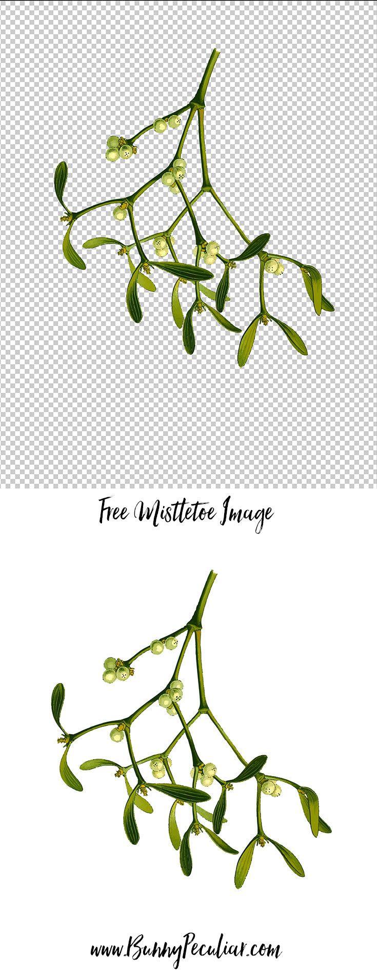 Monster image within printable mistletoe