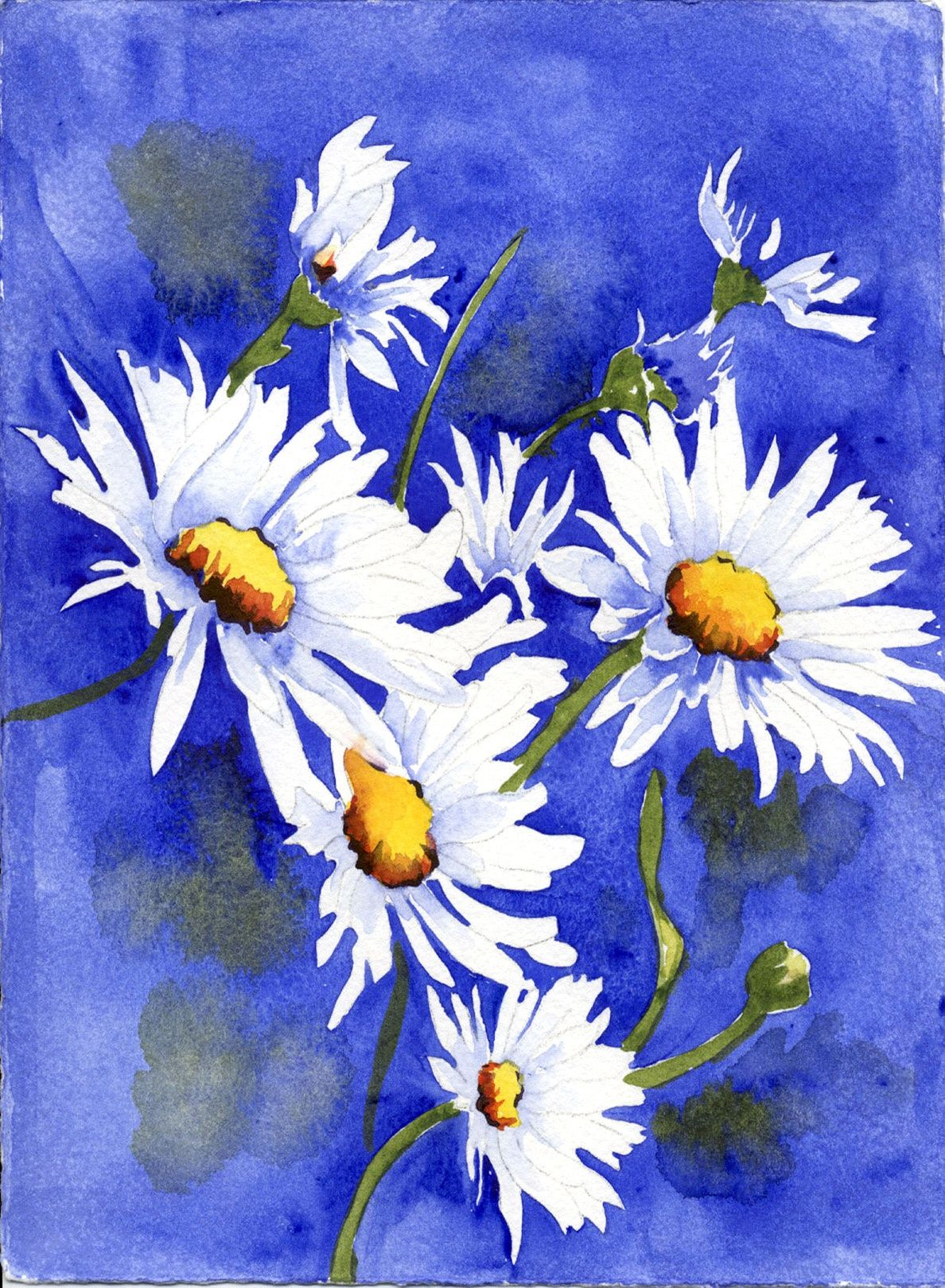 Watercolor Daisies