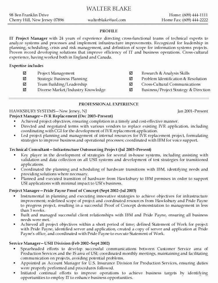 25 It Program Manager Resume Project manager resume