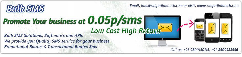 Website Designing Company In Siliguri Hosting Seo Bulk Sms Sms Promote Your Business Website Design
