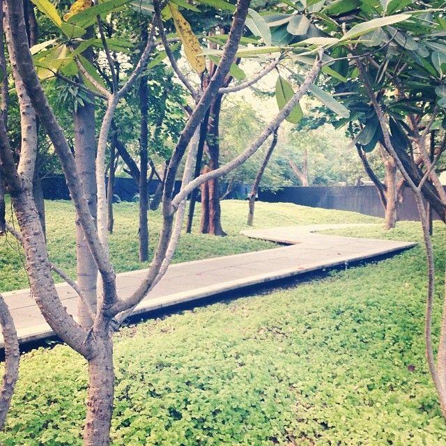 Elf garden. Pune (With images) Instagram, Instagram