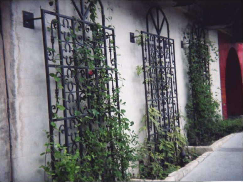 Wrought Iron Wall Trellis: Amazing Metal Garden Trellises #1 Garden Wall Trellis