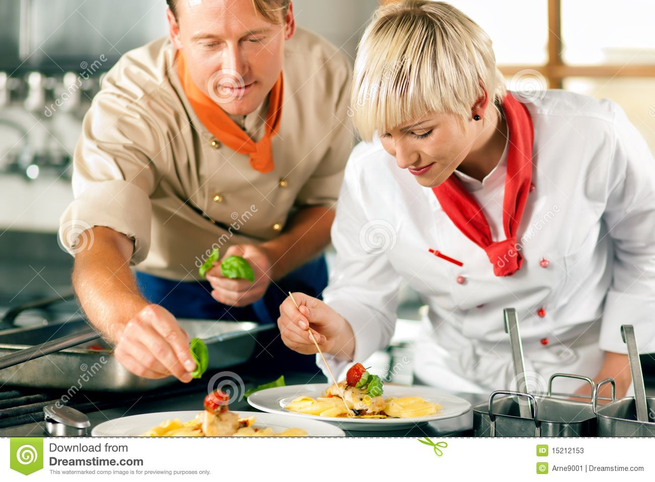Chefs in a restaurant or hotel kitchen cooking stock image image of together prepare 15212153