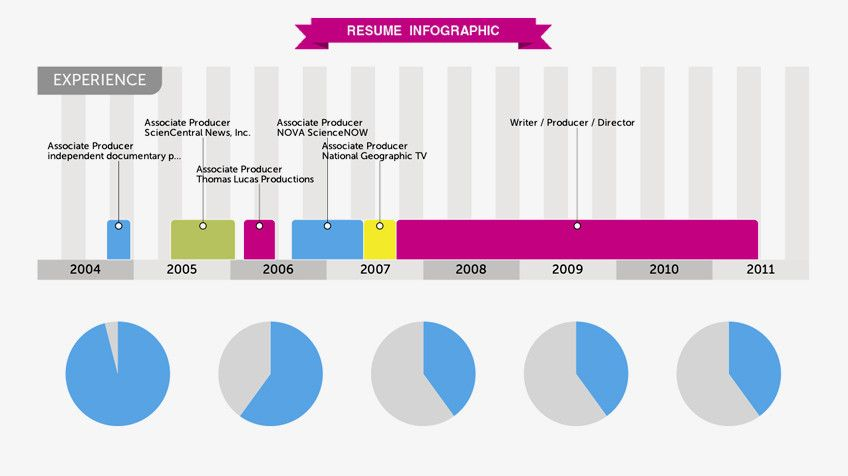 Turn Your LinkedIn Profile Into a Sweet Infographic with Visualize - television producer resume