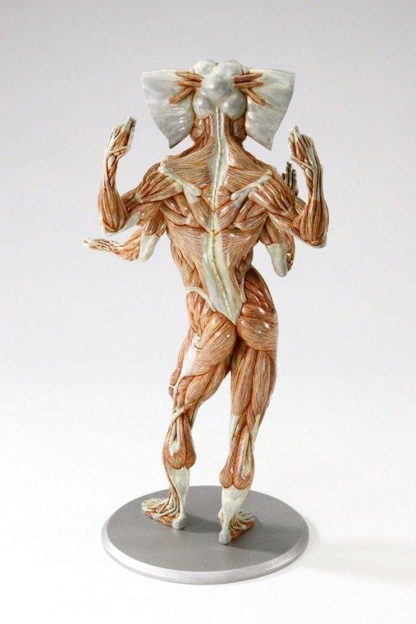 Masao Kinoshita 17 605x908 Hybrid anatomical sculptures by MASAO ...