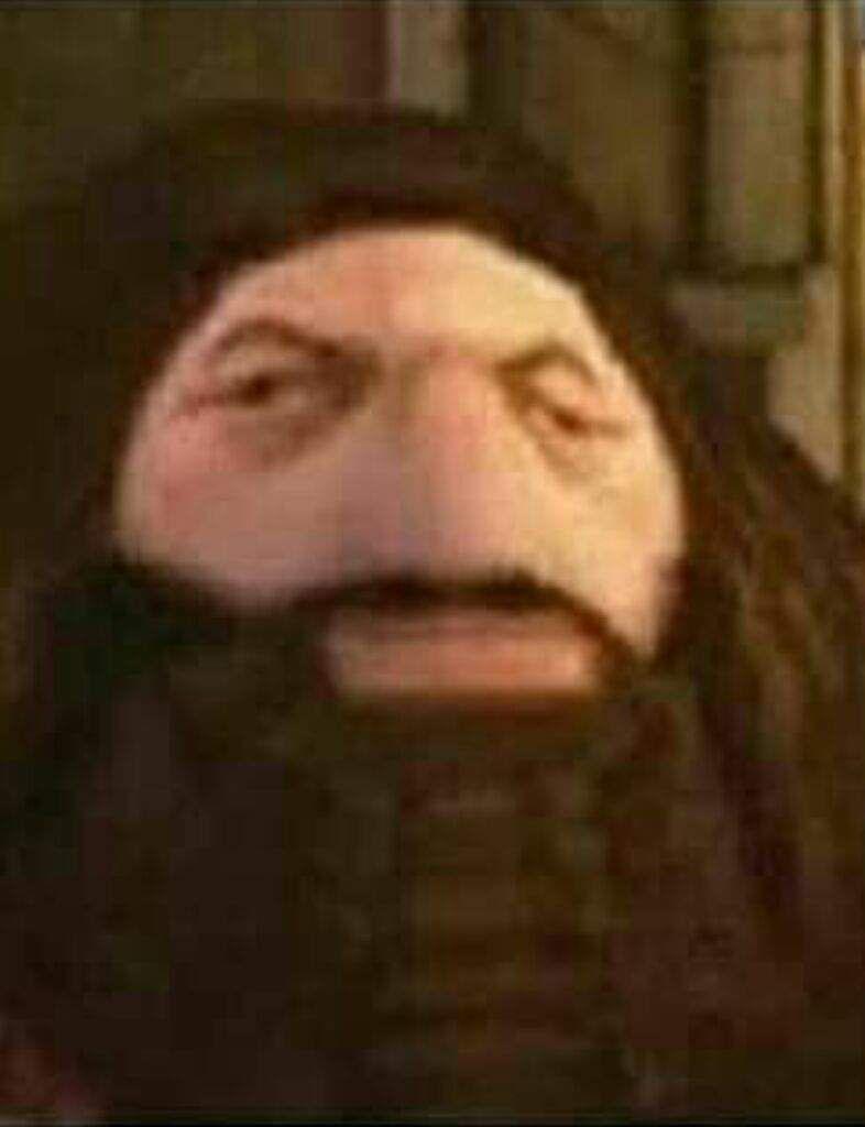 Ps1 Hagrid Hello Memes Hagrid Funny Memes
