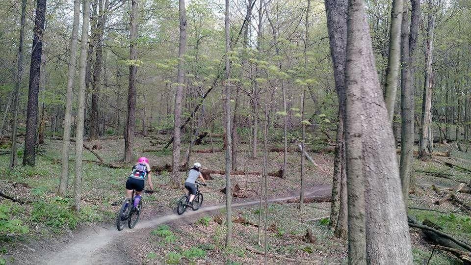 Grab your bike and ride the trails! The Grand Rapids area has so much to offer for biking enthusiasts no matter what the level of experience.