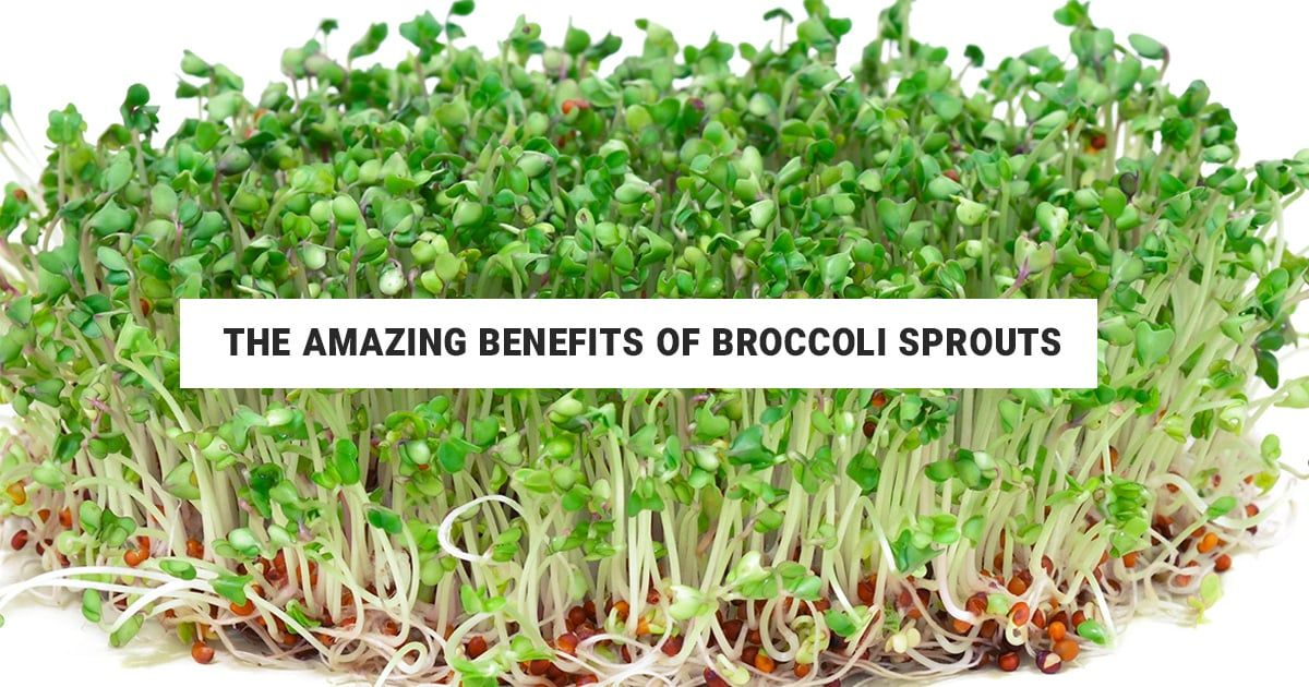 Pin by Emily Goree on How To with Food in 2020 Broccoli