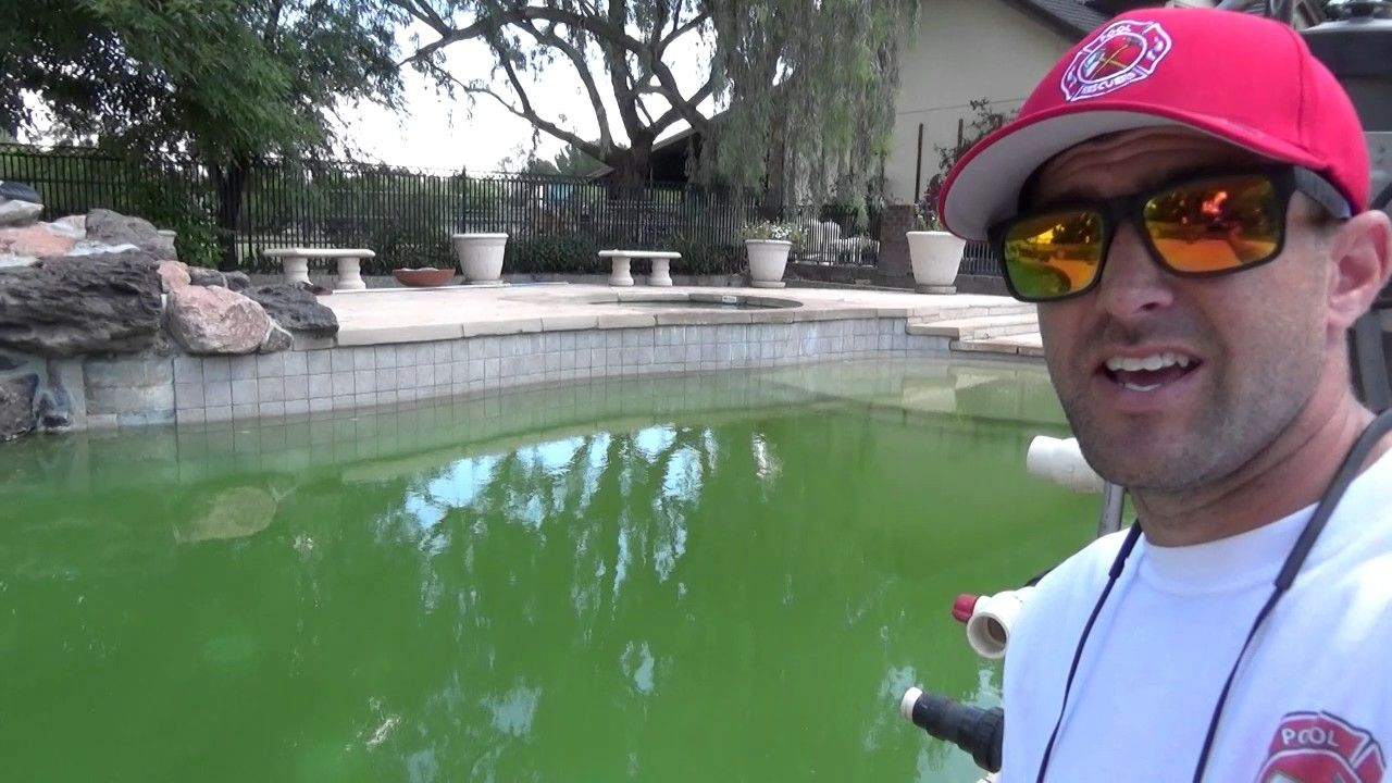 How to clear up a green pool fast youtube green pool
