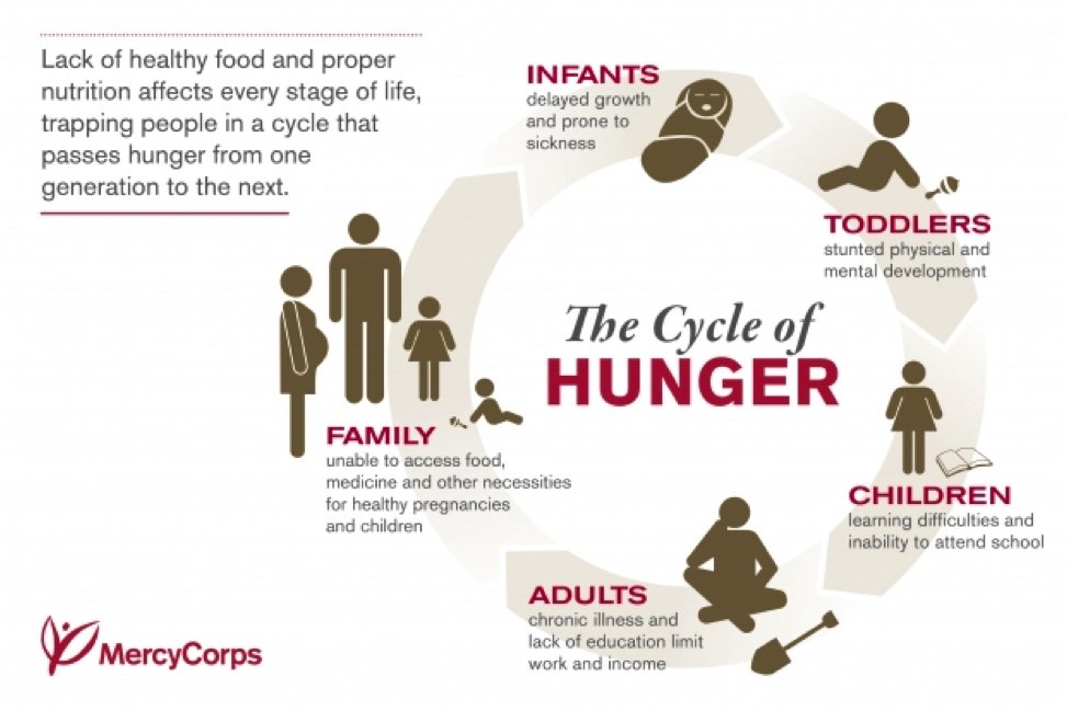 Mercycorp Hunger Cycle Thi Nonsense Need To End World Fact Mental Development Essay On Food Security