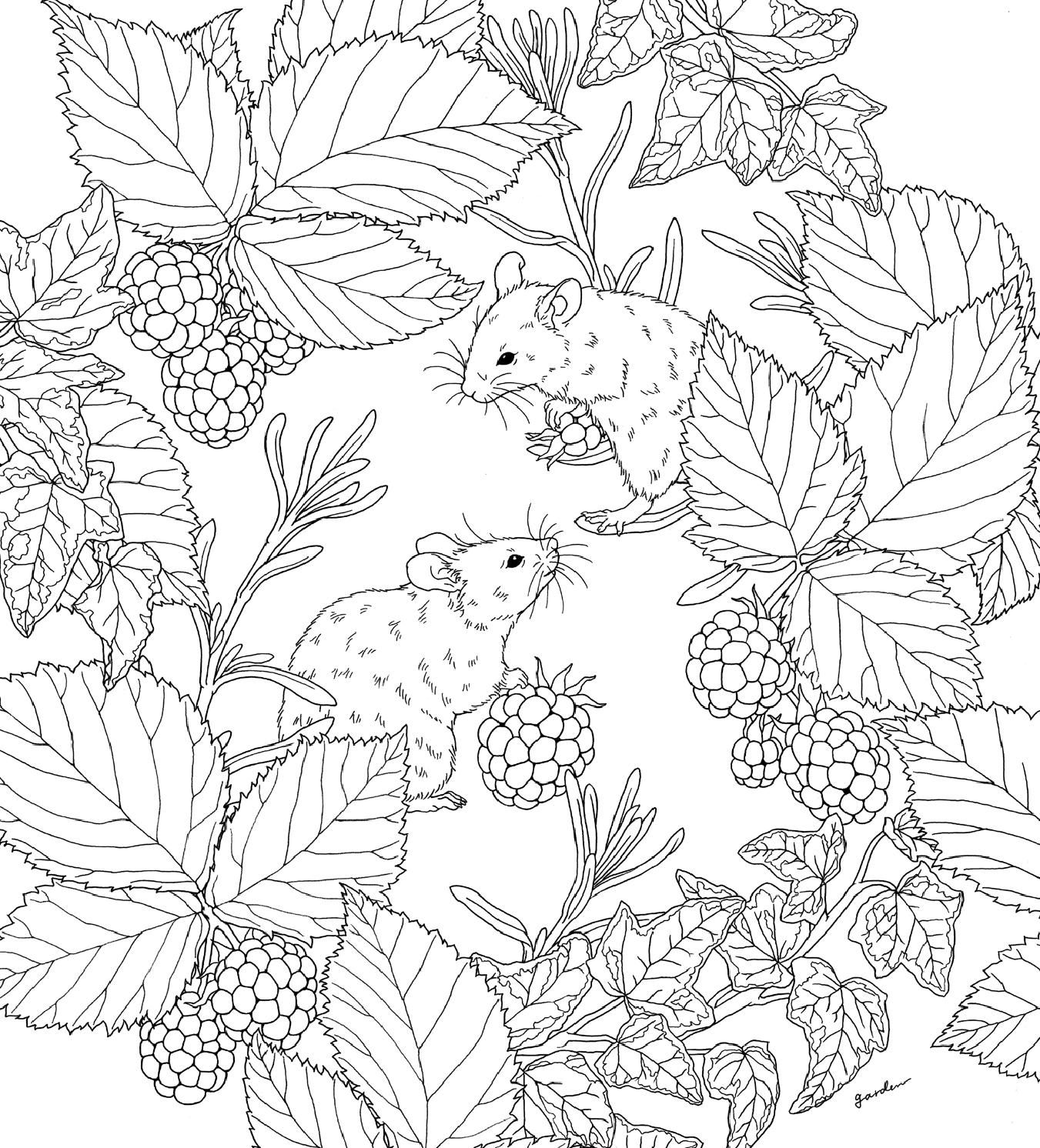 Pin On Coloring Pages To Print Animals