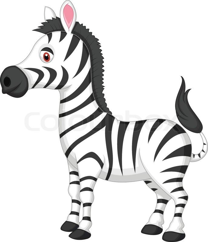 baby zebra cartoon vector illustration of cute zebra cartoon rh pinterest com zebra print clipart clipart zebra free