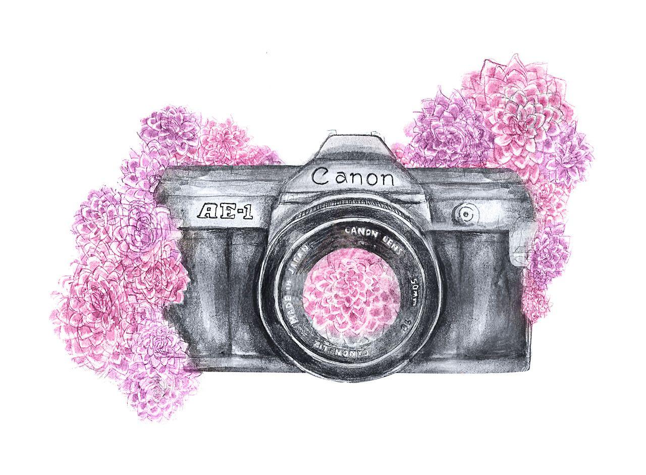 Illustration Camera Http Tessennliz Tumblr Com Camara De Fotos Dibujo Dibujo De Camara Dibujos