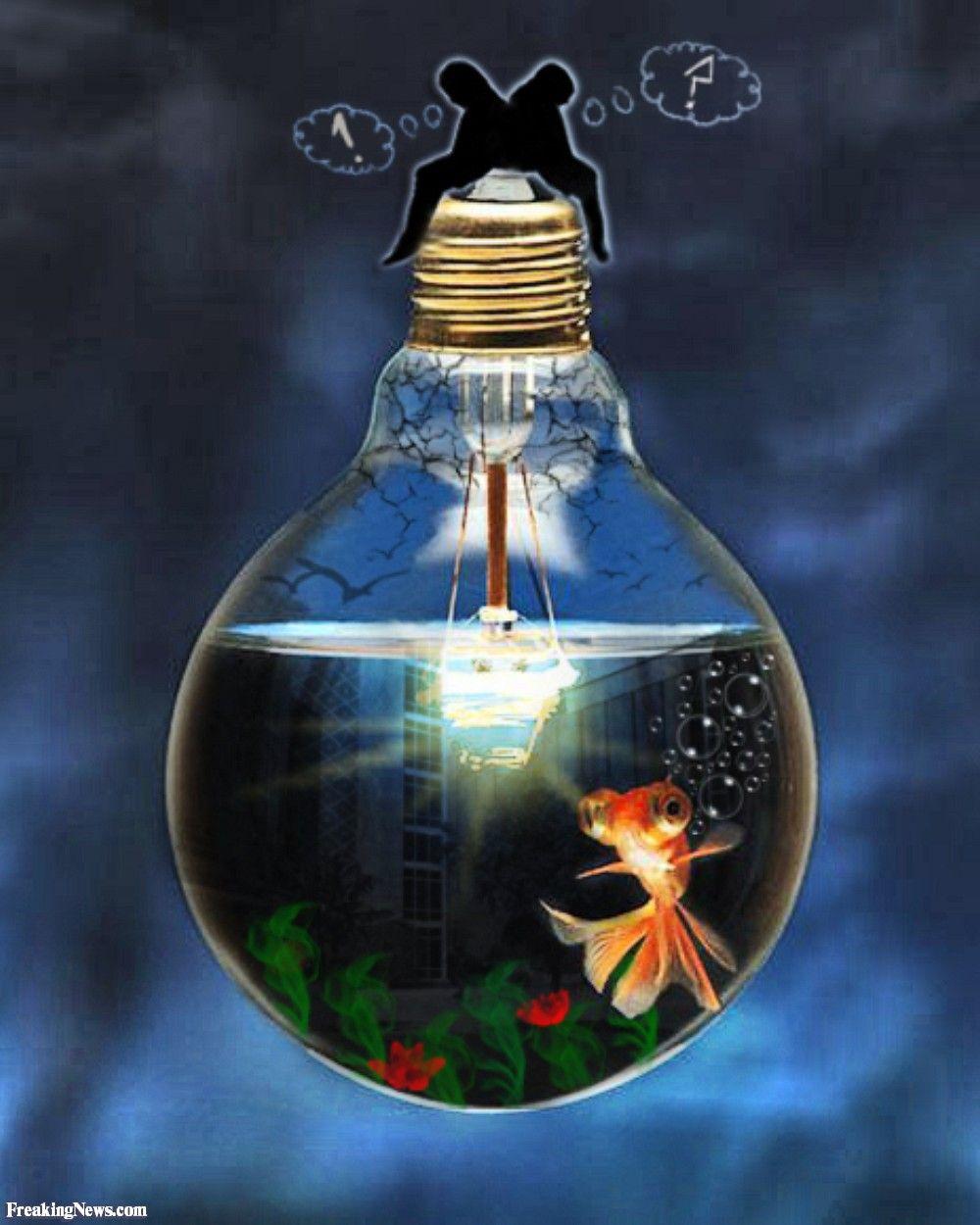 1000 images about lightbulb things on pinterest lightbulbs bulbs - Light Bulb Aquarium 52215 Jpg 1000 1250 Arte Pinterest Lightbulbs