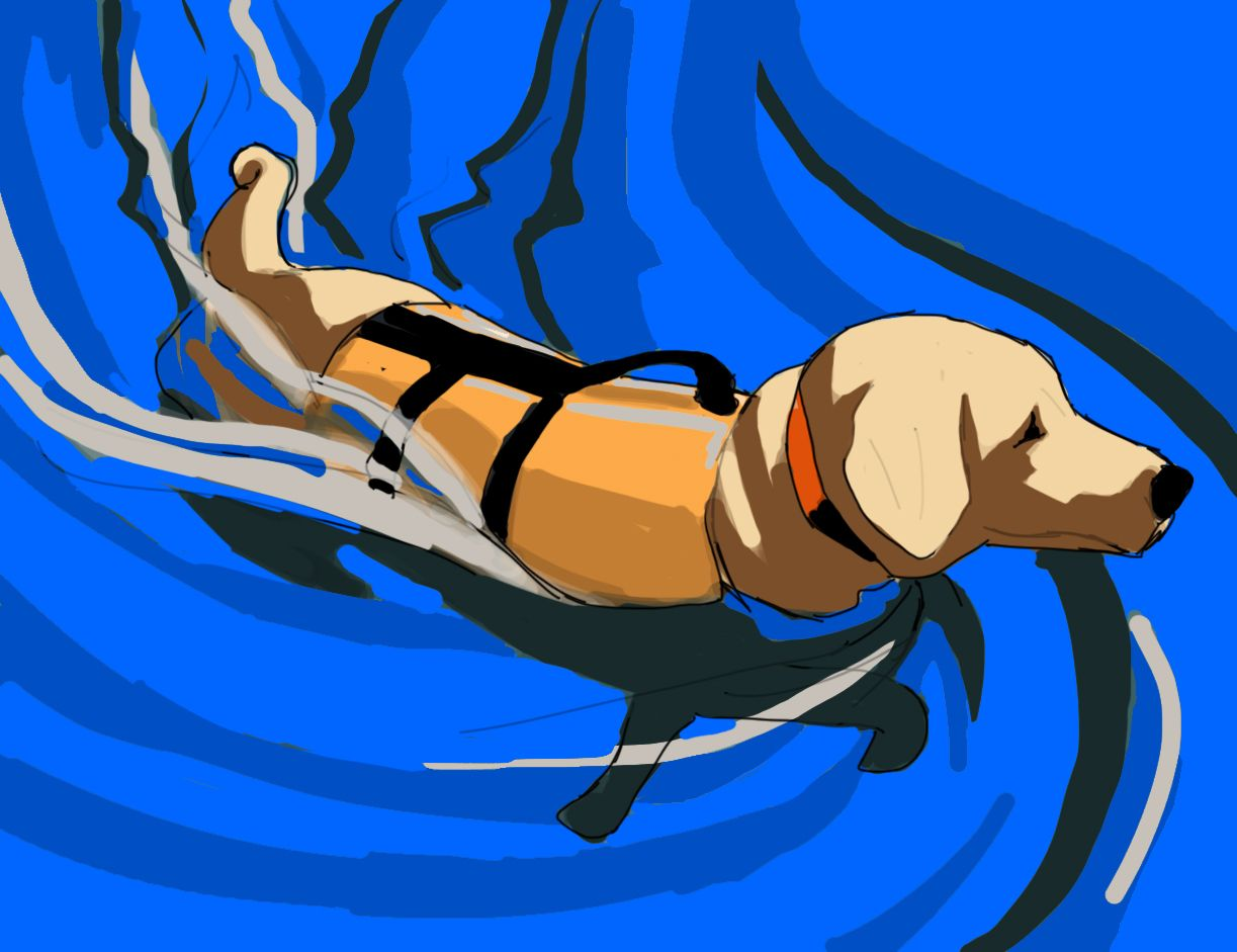 Dog Swimming Patch