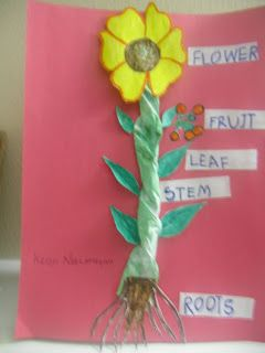 Kids Art And Craft Activities Plants Show And Tell Activity