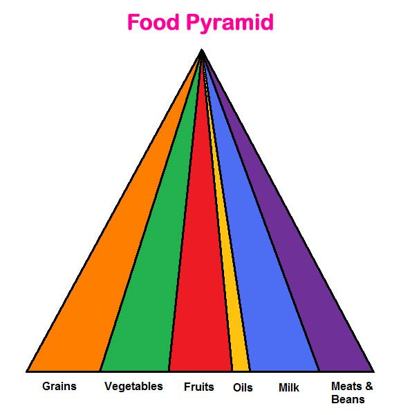 Food Pyramid Lesson & Worksheet - My Schoolhouse - Online Learning ...