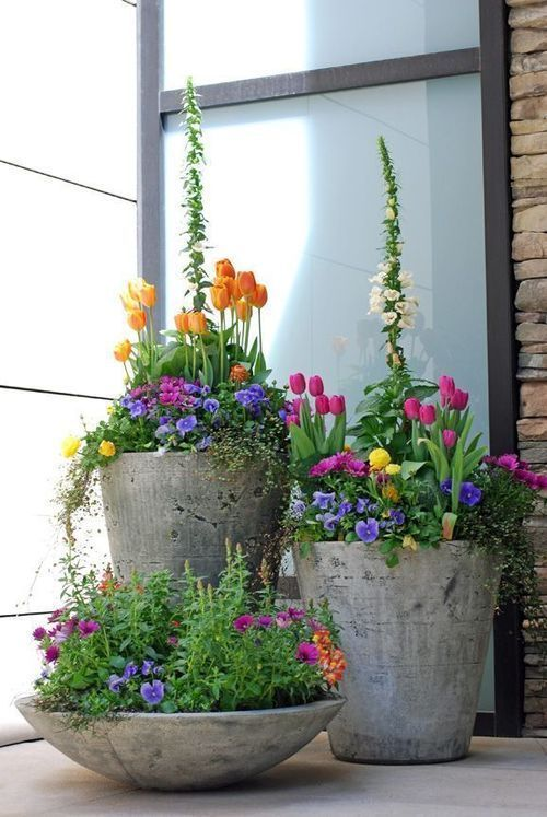 hypertufa containers with spring bulbs and pansies