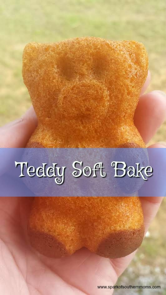 Enjoy Snack Time With Teddy Soft Bakes!