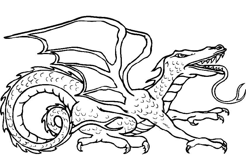 malvorlagen kostenlos zum ausdrucken drachen httpkinder