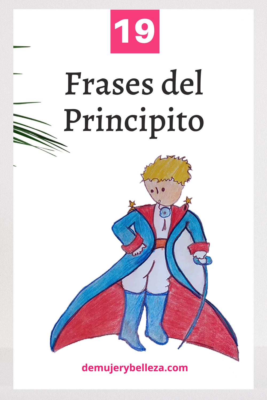 19 Frases Del Principito Sobre El Camino Que Te Harán Reflexionar El Principito Frases El Principito Frases