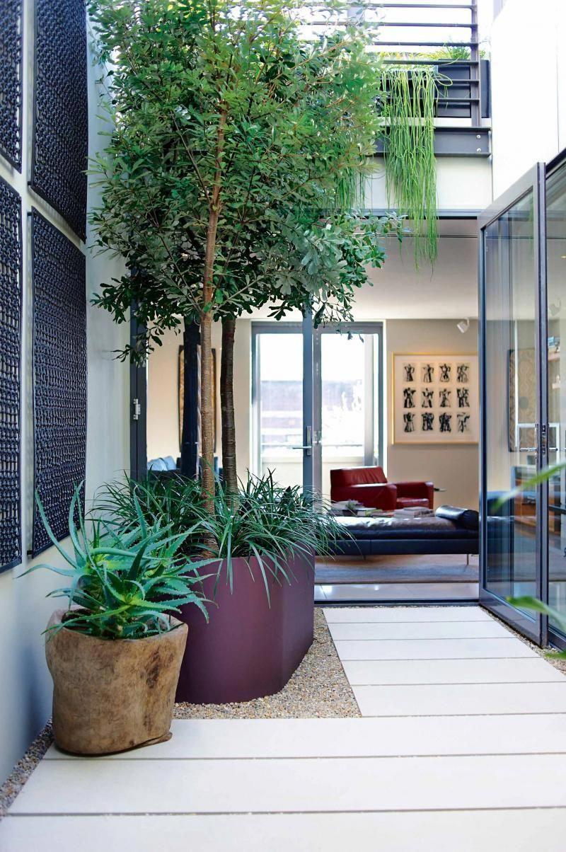 Nice urban gardening, read the super simple post garden