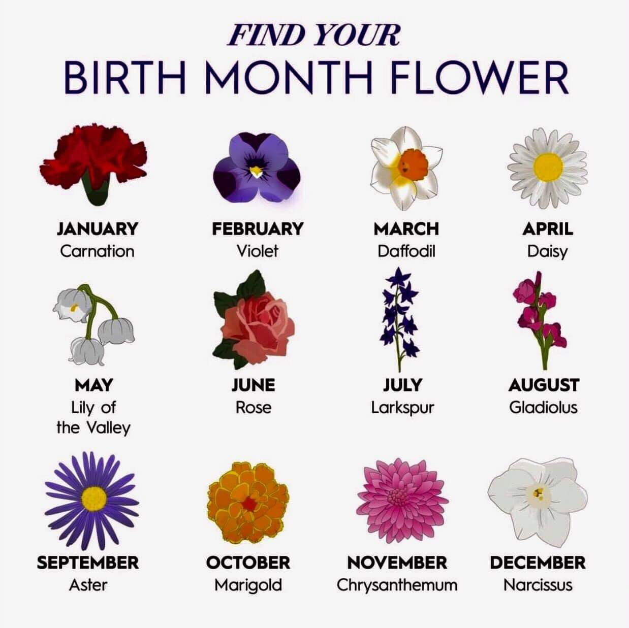Pin By Sherry Vitolo On Inspired In 2020 Birth Month Flowers Birth Flower Tattoos July Birth Flower