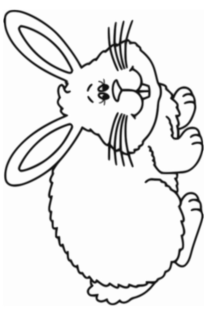 Happy Rabbit Coloring Page Kindergarten Coloring Pages Coloring Pages Rabbit
