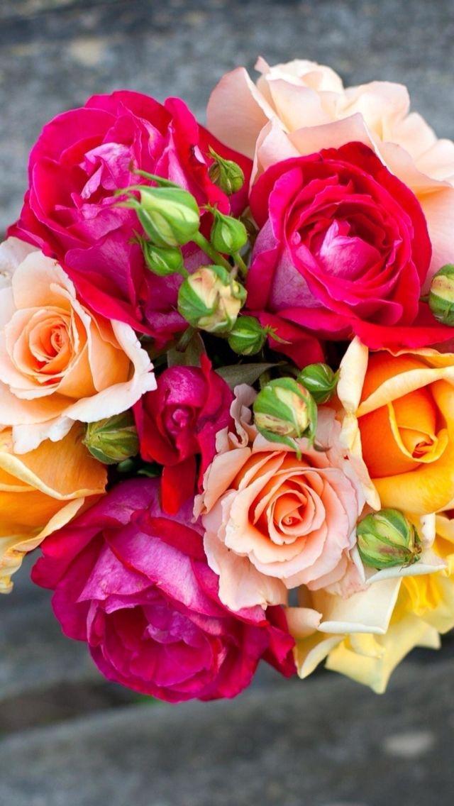 ورود ملونه Flowers Rose Rose Bouquet