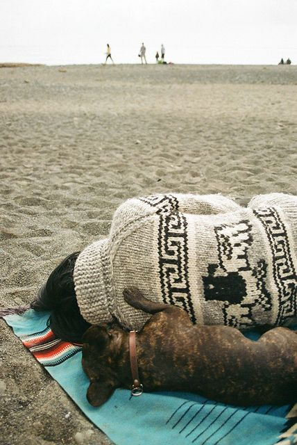 The best thing about the beach and sweater weather- dog nap. Photo: jenerally speaking