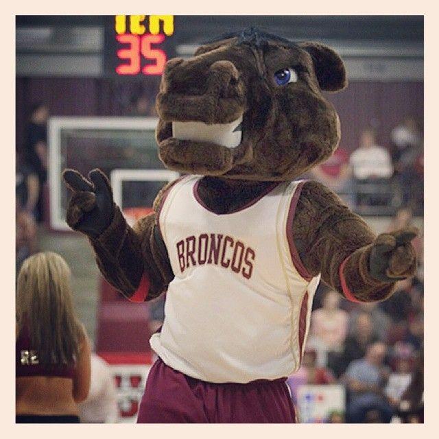 Santa Clara Broncos mascot Bucky. Mascot, Santa clara