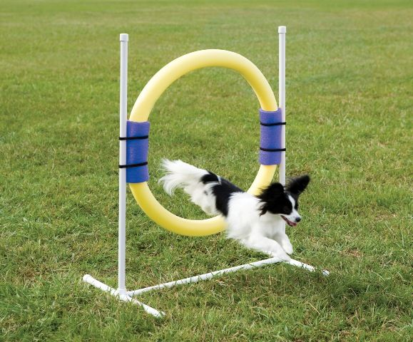 Ring Jump - Get an additional 10% off... Promo Code ...