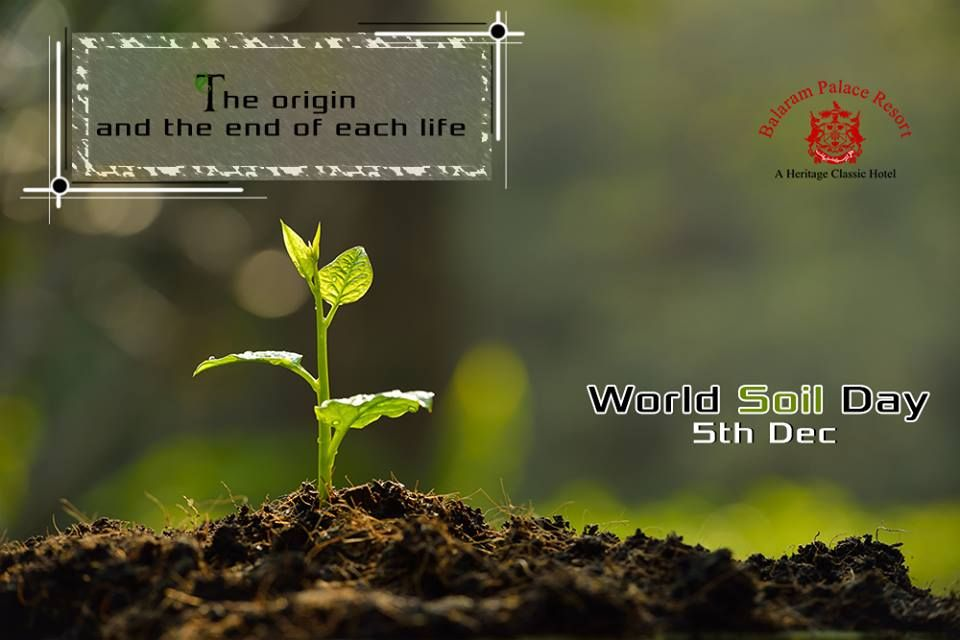 We all came from there and are going to end up there. So why not live in harmony with all! #WorldSoilDay