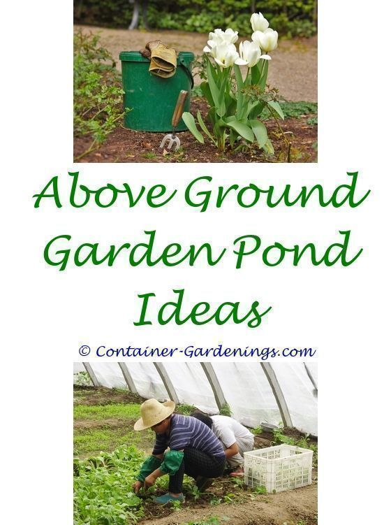 Country Garden Ideas On A Budget