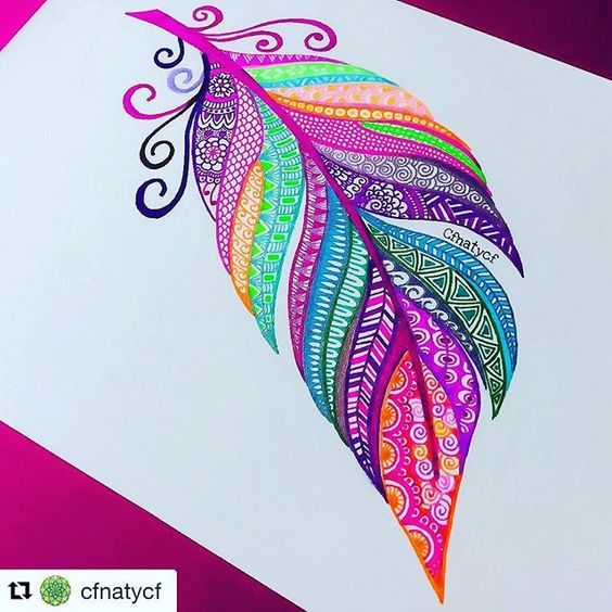 Colourful zentangle feather.   Art drawings, Feather art ...