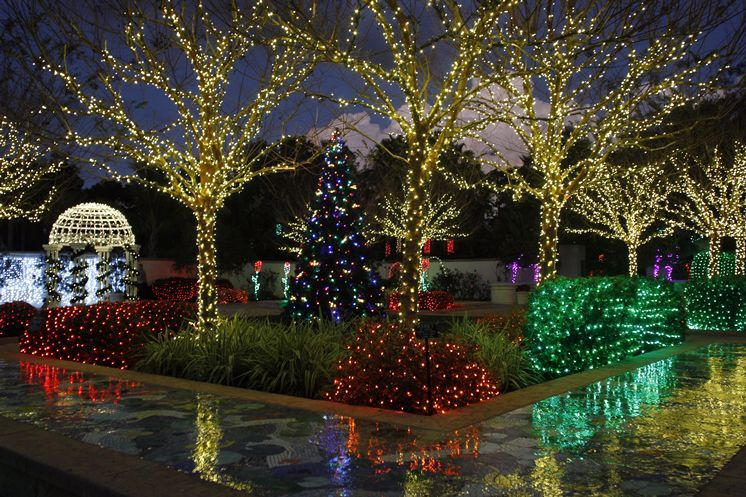 Tampa Bay Holiday Lights In The Garden Florida