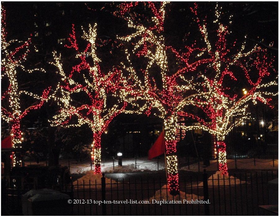 Lincoln Park Zoo A Colorful Zoolights Extravaganza Like No Other Top Ten Travel Blog Holiday Holiday Fun Outdoor Christmas