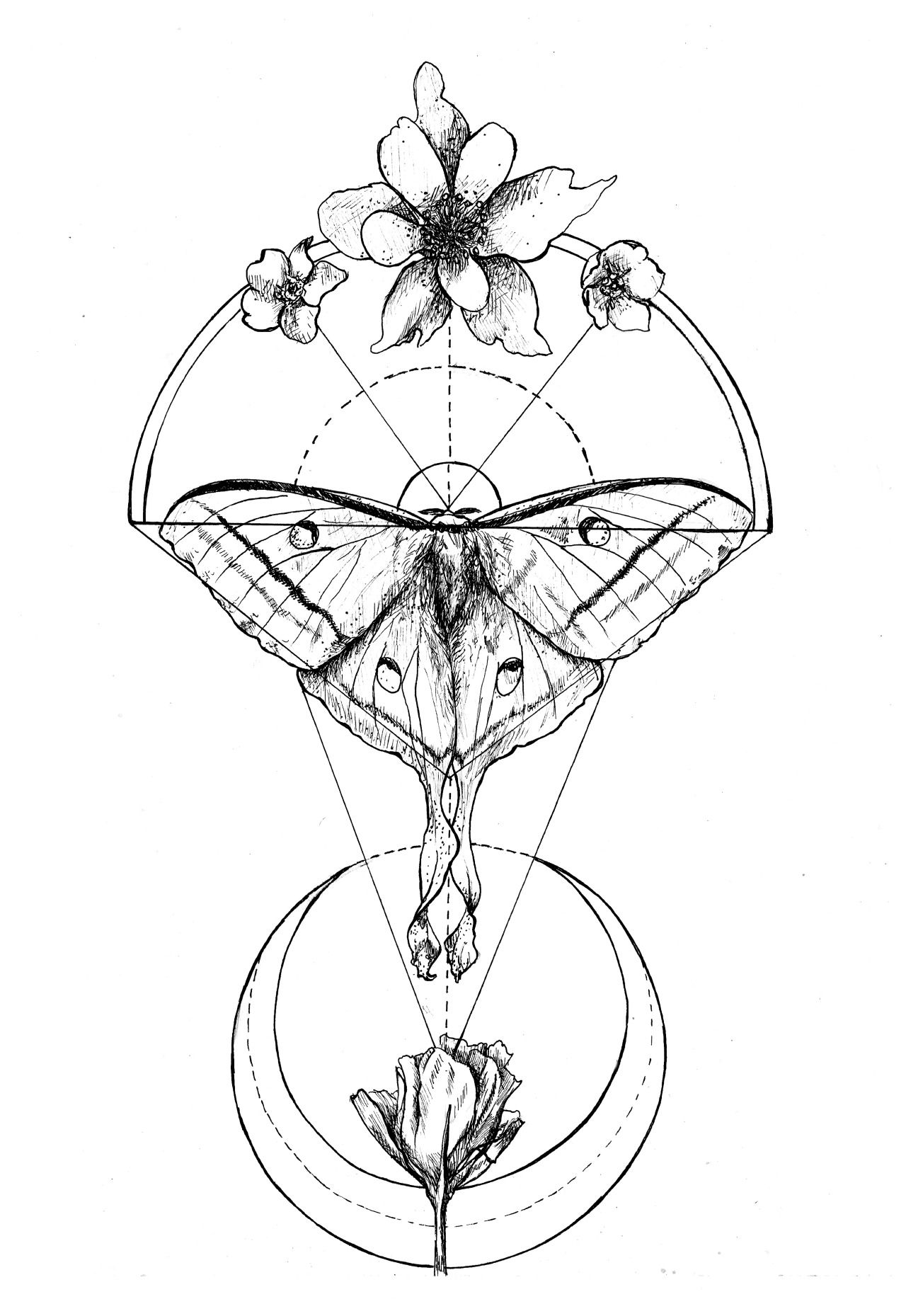 It's just a picture of Selective Sacred Geometry Beetle Tattoo Drawing
