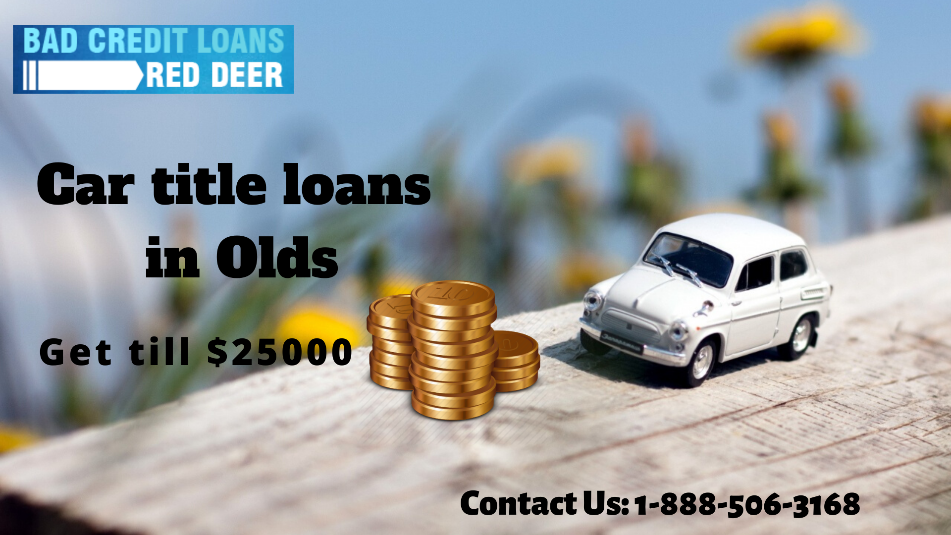 Solve Your Financial Problem By Bad Credit Loans Red Deer In 2020 Loans For Bad Credit Bad Credit Financial Problems