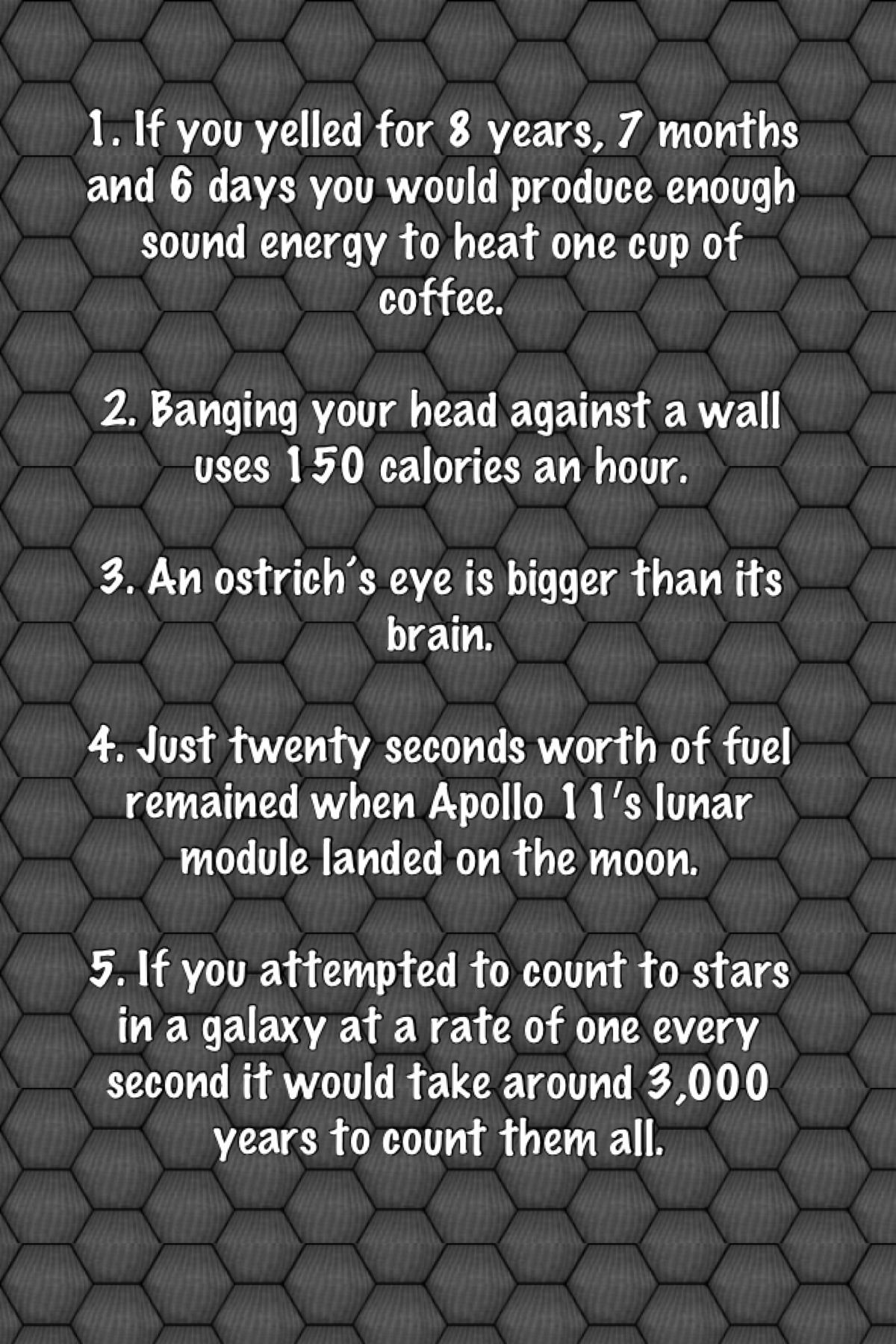 5 Random Yet Interesting Facts Fun Facts Learn Something New