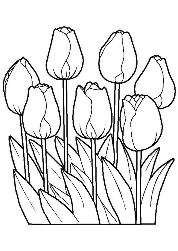 Kleurplaten Bloemen Tulpen.Bloemen Kerst Bloemen Tekenen Bloem Kleurplaten En Kleurplaten