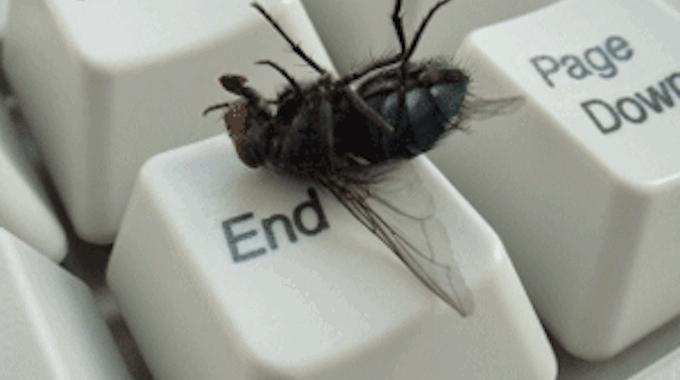 comment je fais fuir les mouches avec une astuce toute simple astuces faire fuir les. Black Bedroom Furniture Sets. Home Design Ideas