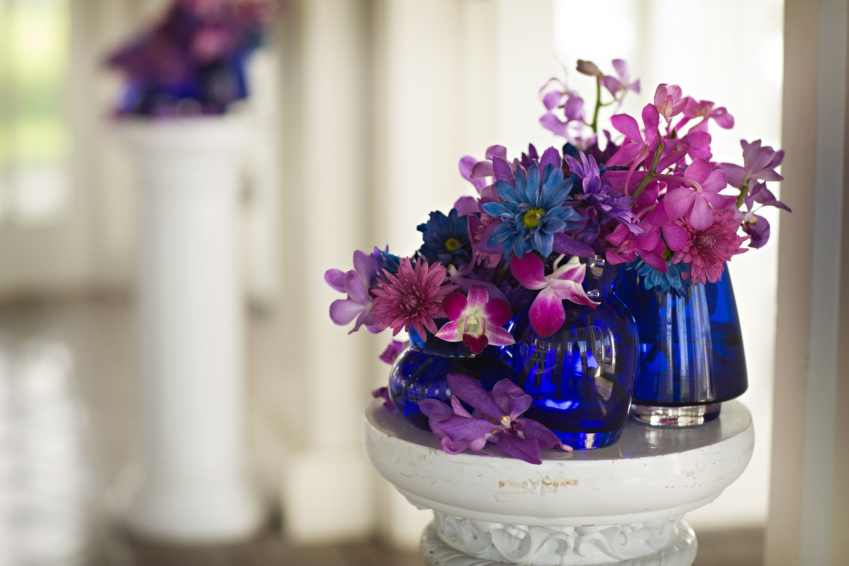 For tara and morgans wedding we used our cobalt blue vases from for tara and morgans wedding we used our cobalt blue vases from our inventory and reviewsmspy