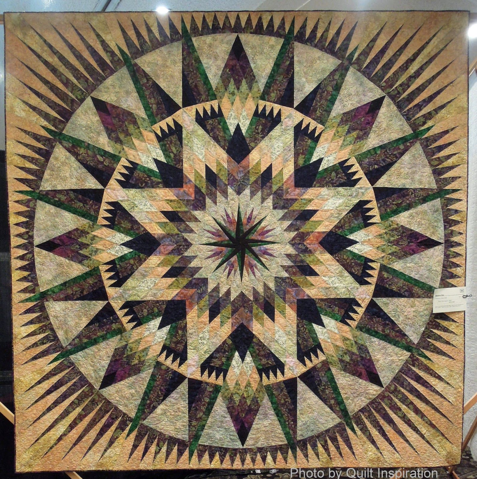 Amazon Star by Nancy Ritter. Design by Judy Niemeyer. 2014 Concord ... : quilt show california - Adamdwight.com