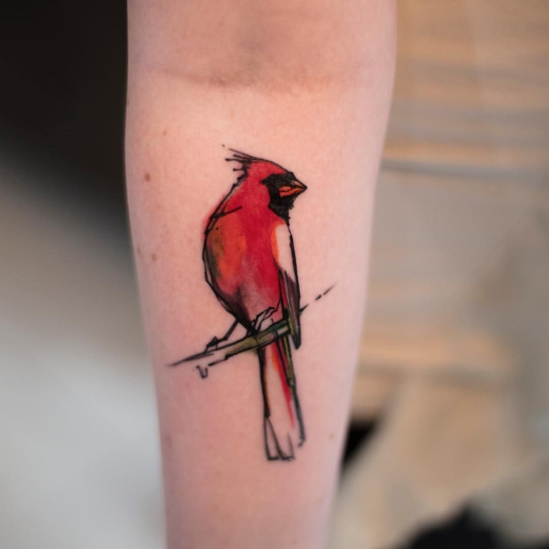 Sweet Little Cardinal From Tonight Watercolortattoo Art