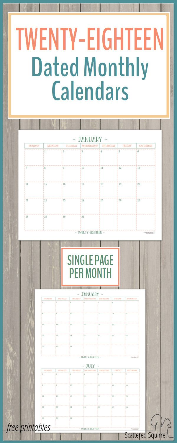 Dated Monthly Calendars  Single Page Edition  Planners