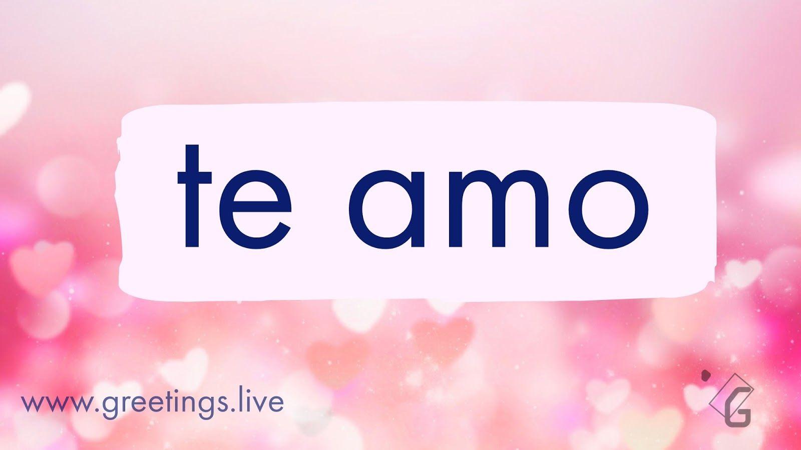 i love you in spanish - HD1600×900